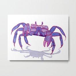 Purple Peacock Crab on the Run Metal Print