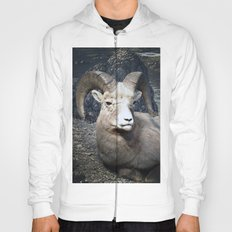 Tom Feiler Mountain Goat Hoody