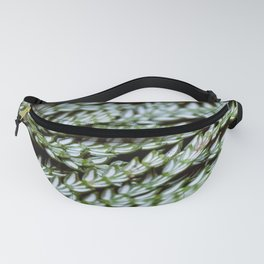 Wreaths Fanny Pack