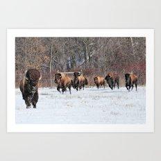 Running Wild Art Print