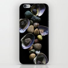 Shells and Stones May... iPhone & iPod Skin