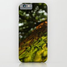 Green with Envy  iPhone 6s Slim Case