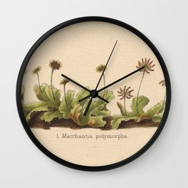 Antique Moss Lithograph Wall Clock