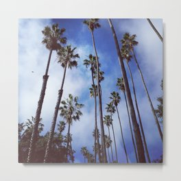 Palm Trees (blue sky, sunny day) Metal Print