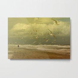 Terns in the Clouds Metal Print