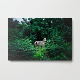 5 | Monochrome Metal Print