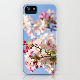 Crabapple blossoms iPhone Case