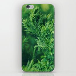 Dreaming in green iPhone Skin