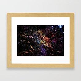 Bear Creek Canyon, Montana Framed Art Print