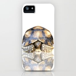 Sulcata Tortoise with Reflection iPhone Case