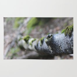 Hiking for photographs Rug