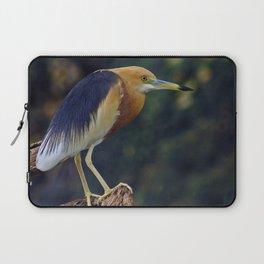 Javan Pond Heron Laptop Sleeve