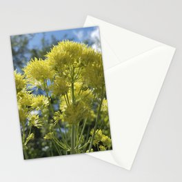Glowing yellow meadow-rue, Thalictrum flavum Stationery Cards