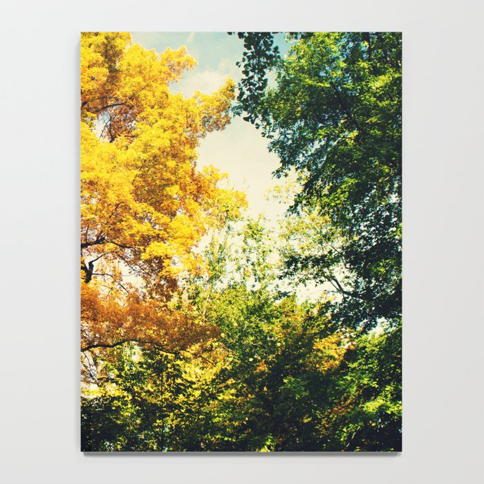 fall in Central Park Notebook