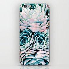 Pastel Paradise iPhone & iPod Skin