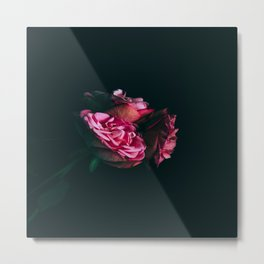 Midnight Roses Metal Print