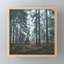 Deep In The Woods Framed Mini Art Print