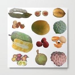 Exotic Fruit Collage Metal Print