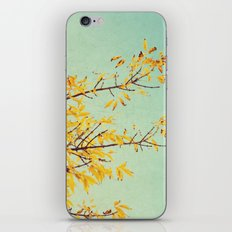in the land of autumn iPhone & iPod Skin