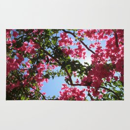 Perfect Pink Bougainvillea In Blossom Rug