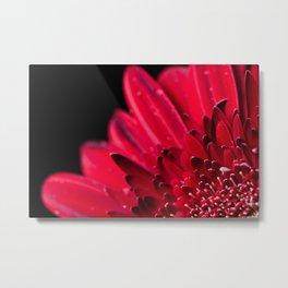 Red Flower Macro Metal Print