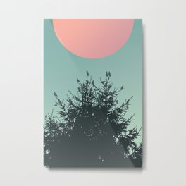 Pine tree and birds Metal Print