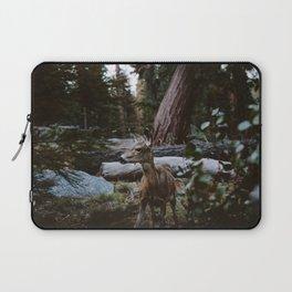 Sequoia Forest Deer Laptop Sleeve
