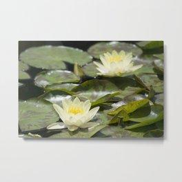 Longwood Gardens - Spring Series 303 Metal Print