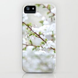 Spring Blossoms iPhone Case