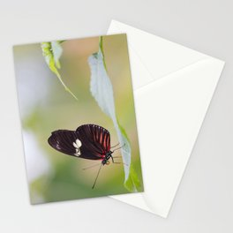Postman butterfly Stationery Cards