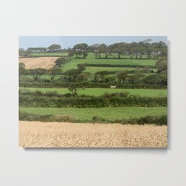 Fields of Devon Metal Print