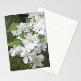 SpringFlowers1 Stationery Cards