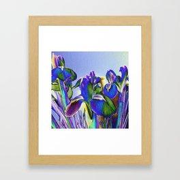 Solariris Framed Art Print