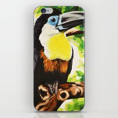Channel Billed Toucan iPhone & iPod Skin