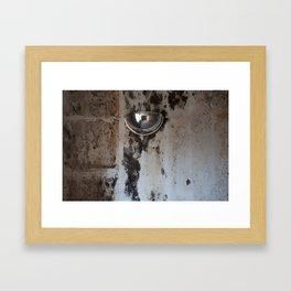 Domed Mirror Framed Art Print