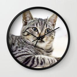 Tiger, Portrait n. 1 Wall Clock