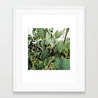 cacti Framed Art Prints featuring Cacti by PoseManikin