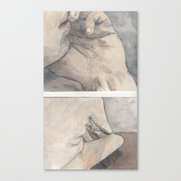 OntheBed Canvas Print