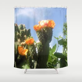 Blossoms in the Spring Shower Curtain