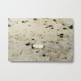 flotsam and jetsam Metal Print