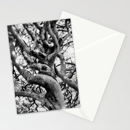 Twisted And Gnarled Stationery Cards