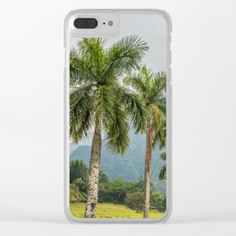 Hawaii Palm Tree Road In Fog Clear iPhone Case