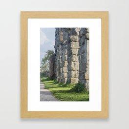 Rome,  Aqueduct Park Framed Art Print