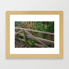 Cognition Mission Framed Art Print