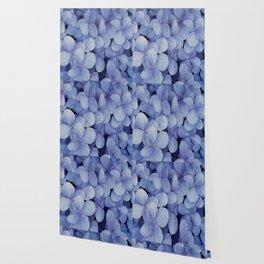 Hydrangea Florets Wallpaper