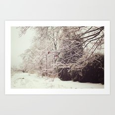 Ice Storm Art Print