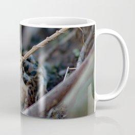 Northern Leopard Frog beautiful portrait Coffee Mug