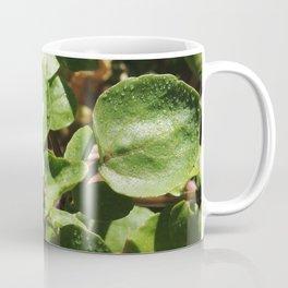 WaterBless Coffee Mug