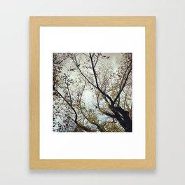 Tree of Birds Framed Art Print