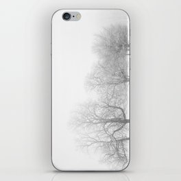Winter Mist iPhone Skin